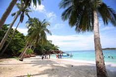 Sao beach, Khem beach is familiar or beach in Mong Tay island, May Rut is wild, so visitors are fascinated whenever coming to Phu Quoc. Water Surfing, World Press, Most Beautiful Beaches, Fishing Villages, Snorkeling, Kayaking, Trip Advisor, Safari, Travel Destinations