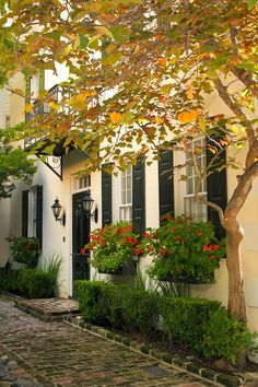 *🇺🇸 The French Quarter in autumn (Charleston, South Carolina) by Doug Hickok 🏙🏠 French Quarter, Exterior Design, Interior And Exterior, Outdoor Spaces, Outdoor Living, Beautiful Homes, Beautiful Places, Brick Pathway, Cobblestone Walkway
