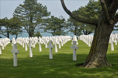The Normandy American Cemetery …