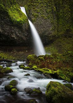 Ponytail Falls I, Colombia River Gorge, Oregon, USA
