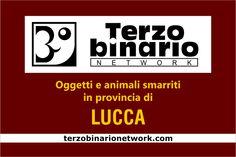 Oggetti e animali smarriti in provincia di Lucca