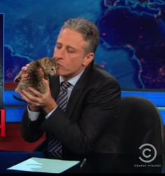 Professor Butterscotch liked to argue politics with Jon Stewart, who proved to be a worthy adversary except on those occasions when he drank absinthe. Absinthe turned Jon into an idiot. Jon Stewart, Crazy Cat Lady, Crazy Cats, Famous Men, Famous People, Celebrities With Cats, Celebs, Men With Cats, The Daily Show