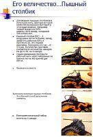 "Gallery.ru / Jasnaja - L'album ""colonnes de blocs de ElenyS Lush et"""