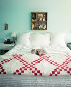 Quilt.  Red and white double Irish Chain. Always beautiful.  I like the cat too.