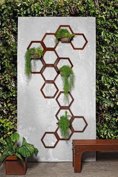 Introducing the Hex Vertical Garden. This module unit can be arranged any way you like, and the design lift brackets make it easy to install (screw to wall and lift hex frame onto it).  It brackets off the wall so climbers can grow up and around the frame, and so that the metal doesn't mark the wall.