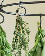 Growing Herbs, Herb Garden Ideas