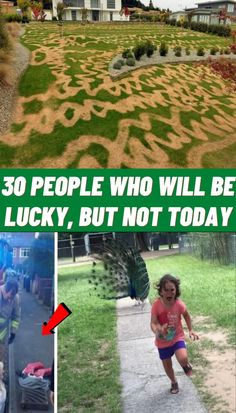 #People #lucky #but #not #today Diy Resin Crafts, Rock Crafts, Diy Arts And Crafts, Photography Pics, Creative Photography, Nature Photography, Flower Photography, Funny Sign Fails, Cute Finger Tattoos