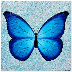 Butterfly - Joyful Wish Granter - Textured Painting . 76cm x 76cm. This Blue Butterfly represents so many meanings. The Butterfly is a spiritual symbol in many cultures all around the world. It can mean powerful transformation, rebirth, life cycle, playfulness, joy, wish granter, colour, lightness, and life's journey.
