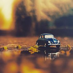 This little car is adorable also I don't know that me talking to Hailee is the best idea. I didn't make this agreement with her, you did. Also she doesn't really trust me very much. I guess I'll think about it though Miniature Photography, Cute Photography, Macro Photography, Creative Photography, Cool Pictures For Wallpaper, Cool Photos, Minis, Dove Pictures, Miniature Cars