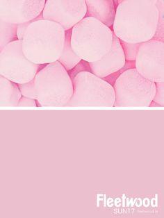 Fleetwood Paint's pink paint colour SUN17