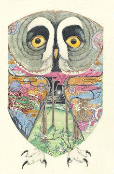 Great Grey Owl by Daniel Mackie #owl #illustration #art