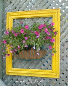 framing a planter of flowers, flowers, gardening, repurposing upcycling, With just a little spray paint I now have a 3D piece of art on my back deck