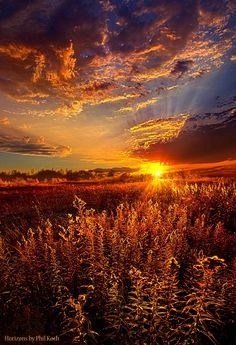 Vertical Landscapes: Phil Koch - Art - Not Thinking About Tomorrow by Phil Koch All Nature, Amazing Nature, Beautiful World, Beautiful Images, Sunset Wallpaper, Beautiful Sunrise, Sunset Photos, Nature Pictures, Beautiful Landscapes