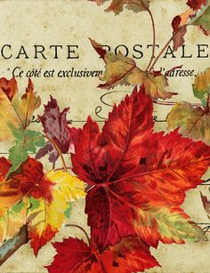 In Dreamful Autumn ~ maple leaves and French postcard graphic.