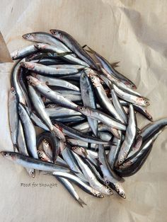 Food for thought: Γαύρος μαρινάτος βήμα - βήμα Fish Recipes, Recipies, Yams, Free Food, Seafood, Food And Drink, Appetizers, Meat, Cooking