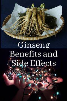 Ginseng refers to eleven different varieties of a short, slow-growing plant with fleshy roots, Ginseng is believed to restore and enhance wellbeing. It is one of the most popular herbal remedies.