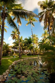 Punta Cana Vacations - Melia Tropical - All-Inclusive - Property Image 7