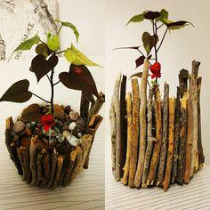 Doğa yürüyüşü sırasında topladığım ağaç dallarını saksı olarak hazırladığım pet şişeden saksının üzerine silikon ile yapıştırarak bu güzel saksıya sahip oldum. Toprağın üzerinede nehir kenarından topladığım taşları yerleştirdim.