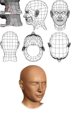 Modeling a Female Head