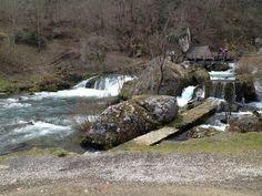 Dragica Krčmar Jedan predivan dan u prirodi, gdje je i nastala ova fotografija!