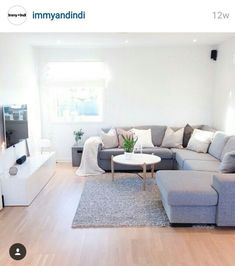 Gray sofa inspo.