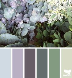 nature tones - color palette from Design Seeds love the light purple for dining room one day Colour Pallette, Color Palate, Colour Schemes, Color Combos, Office Color Schemes, Color Schemes For Wedding, Purple Palette, Nature Color Palette, Design Seeds