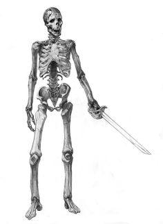 skeleton by ~AlexPascenko on deviantART