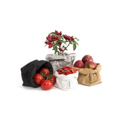 Paper bags via Le Sorelle Toscana, Italy. Stylish paper bags, good for gift wrapping. Plant Bags, Living Tv, Bread Bags, Eco Green, Harvest Time, Home And Deco, Fibres, Toffee, Cozy House