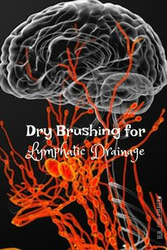 Healthy Living Tips Dry Brushing for Lymphatic Drainage, Dry brushing makes your skin soft and may help with lymphatic drainage! - Dry Brushing for Lymphatic Drainage Health And Nutrition, Health Tips, Health Articles, Nutrition Education, Health Benefits, Herbal Remedies, Natural Remedies, Lymph Fluid, Natural Health