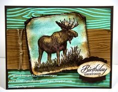 stampin up walk in the wild | Walk on the Wild Side- A Watercolor Birthday I love these two colors ...