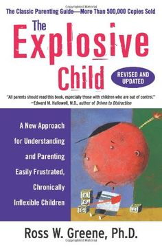 The Explosive Child: A New Approach for Understanding and Parenting Easily Frustrated, Chronically Inflexible Children by Ross W., PhD Greene http://www.amazon.com/dp/0061906190/ref=cm_sw_r_pi_dp_30WOtb0J3621M5ND