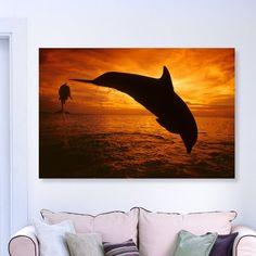 Latitude Run 'Bottlenose Dolphin Roatan' Photographic Print on Canvas Size: 30'' H x 45'' W x 1.5'' D