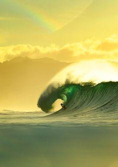 La foto de surf de nicolefarga