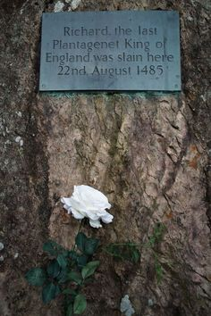 History Of England, Tudor History, European History, British History, Asian History, Uk History, History Photos, Ancient History, Family History