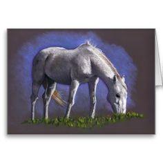 White Horse Grazing: Original Color Pencil Art Cards