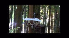 Pruning Robot #robotics #video