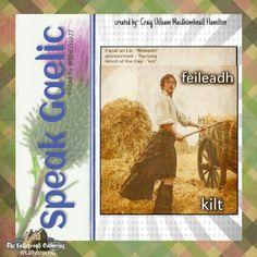 Scottish Gaelic Phrases, Scottish Words, Gaelic Words, Irish Language, Celtic Music, Word Of The Day, Outlander, Good To Know, Scotland
