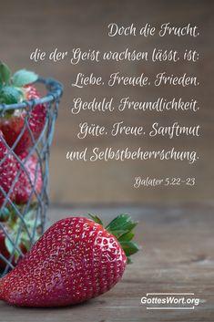 """""""Die Frucht des Geistes aber ist Liebe, Freude, Friede, Langmut, Freundlichkeit, Güte, Treue, Sanftmut, Selbstbeherrschung. Gegen solche Dinge gibt es kein Gesetz.""""     Schau: http://www.gottes-wort.com/frucht-des-geistes.html"""