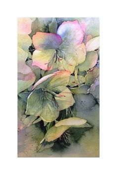 Hellebores by Fran McGarry