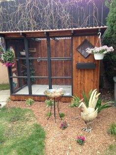 AMAZING macaw aviary!!! Animals! Pinterest Bird