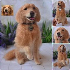 Custom Needle felted Golden Retriever Realistic sculpture of your pet Collectible dog figurine Pet Replica Wool Memory Portrait Personalized