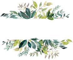 frames and borders Comentrios Watercolor Leaves, Watercolor Cards, Flower Backgrounds, Wallpaper Backgrounds, Wallpapers, Vegetal Concept, Floral Border, Flower Frame, Art Drawings
