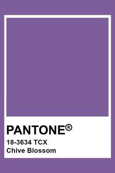 PANTONE 18-3634 TCX Chive Blossom #pantone #color #purple Pantone Tcx, Pantone Swatches, Color Swatches, Pantone Color Chart, Pantone Colour Palettes, Lavender Aesthetic, Purple Aesthetic, Bujo, Chive Blossom