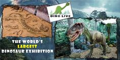 Get a VVIP ticket to Dino Live and enjoy a 3D movie, slush juice, popcorn and a green screen picture for just AED 40 (Value AED 250)