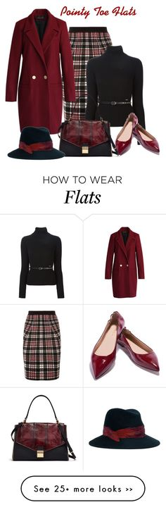 """Pointy Toe Flats"" by lorrainekeenan on Polyvore featuring moda, Alexander…"