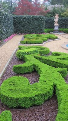 French Partere Garden at Hillwood.