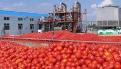 Effects of Herdsmen activities on national food security