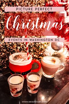 The ULTIMATE bucket list for Washington DC this winter. All of the best Christmas events in DC you won't want to miss! The best things to do in DC for couples, kids, families, and friends this holiday season! Christmas Events, Christmas Travel, Holiday Travel, Christmas Fun, Holiday Fun, Christmas Markets, Christmas Getaways, Christmas Destinations, Dc Travel
