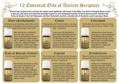 Young Living Essential Oils: 12 Essential Oils of Ancient Scripture Bible Essential Oil Companies, Essential Oils Guide, Essential Oil Uses, Young Living Oils, Young Living Essential Oils, Yl Oils, Healing Oils, Scriptures, Bible Verses