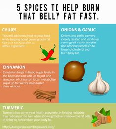 The Belly Fat Blog